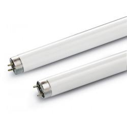 Tube 58W/840 T8 Blanc Brillant (0001530) - SYLVANIA