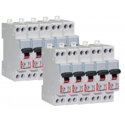 Lot de 10 Disjoncteurs DNX 20A - Uni+N -230V- À Vis (406775) - LEGRAND