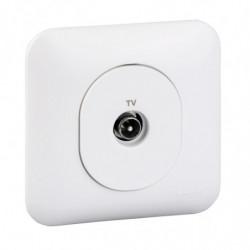 Ovalis - prise TV (S260405)