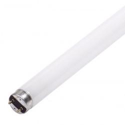Tube 14W/865 T5 lumière du jour (0002762) - SYLVANIA