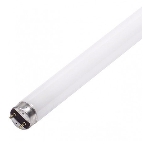 Tube 14W/865 T5 Lumière du jour