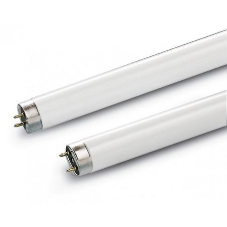 Tube 58W/830 T8 Blanc Confort