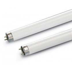 Tube 58W/840 T8 Blanc Brillant